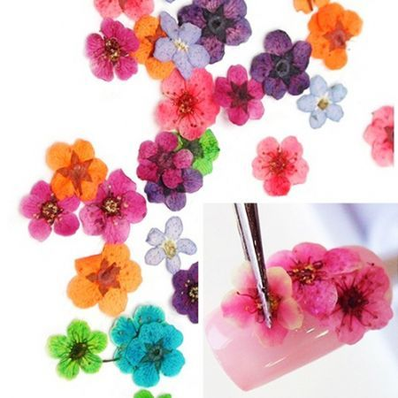 36PCS Colorful Dried Peach Blossom Nail Art Decorations Random Color)