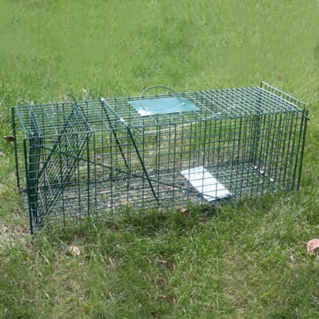 Extra Large Humane Live Animal Trap