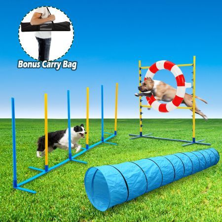 Dog Agility Training 3 Piece Combo Set