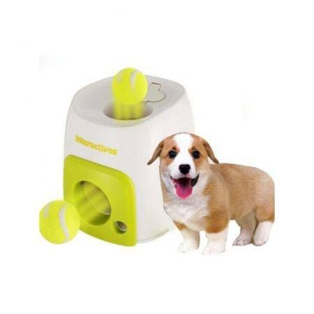 All For Paws Interactive Fetch N Treat Dog Toy