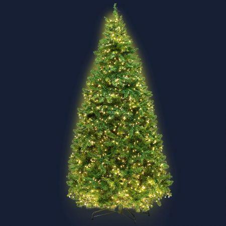 Jingle Jollys 1.8M 6FT Christmas Tree 874 LED Lights 874 Tips Warm White Green | Crazy Sales