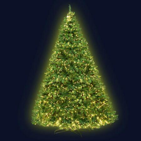 Jingle Jollys 2.4M 8FT Christmas Tree 1488 LED Lights 1488 Tips Warm White Green | Crazy Sales