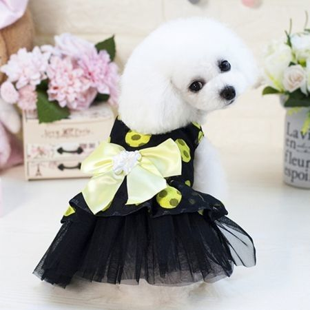 Pet Dress Dog Lace Skirt Lace  Wedding Party M