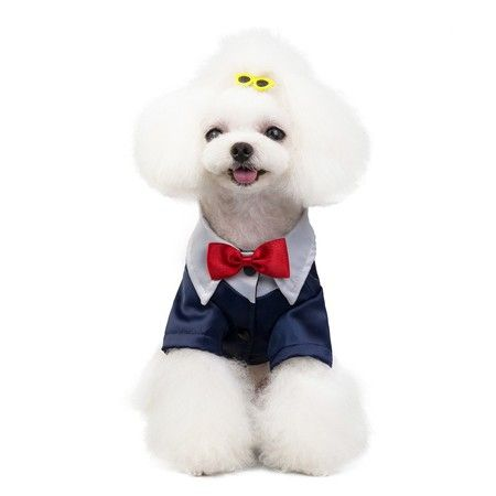 Pet stylish suit bow tie costume S