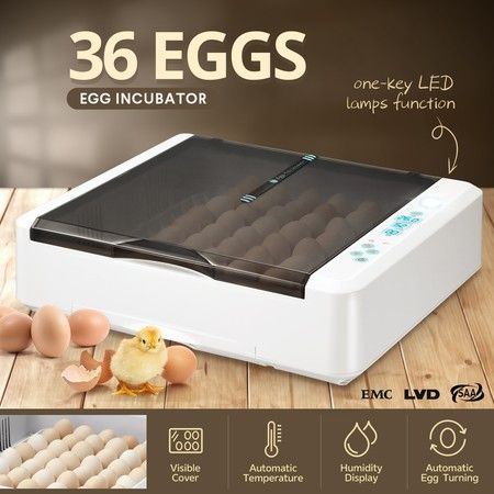 Digital Fully Automatic Egg Incubator 36-120 Eggs Poultry Hatcher Chicken Duck Bird Auto Turning