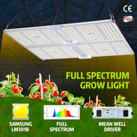 4000W Full Spectrum LED Plant Grow Light Samsung LM301B Growing Lamp