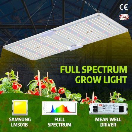 2000W Full Spectrum LED Plant Grow Light Samsung LM301B Growing Lamp