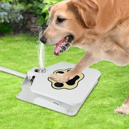 Dog Pedal Step Water Fountain Dispenser Stay Cool in Summer