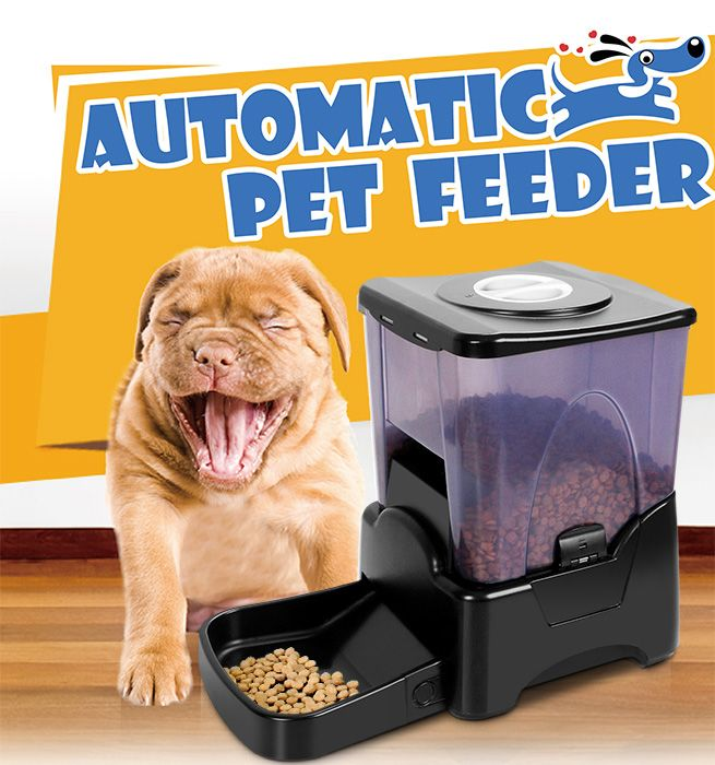 auto meal food pet blue cat dispenser nologo dog pf feeder automatic product bowl electronic