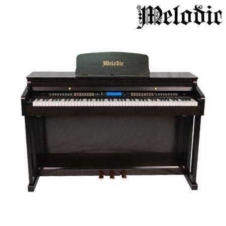 MELODIC 100 Rhythms 88 Standard Weighted Keys(Hammer ...