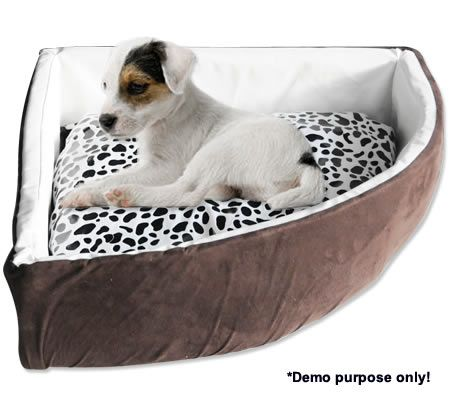 Large Pet Bed Pet Supplies Crazysales Com Au Crazy Sales