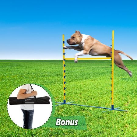 Dog Training Practice Agility Exercise Jump Bar