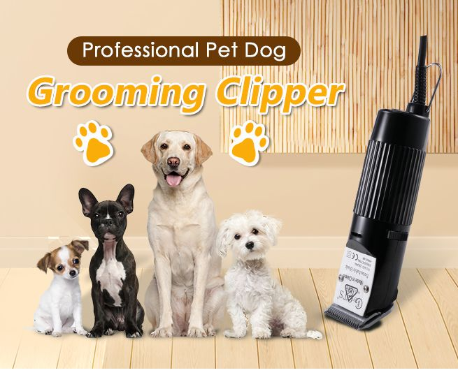 Gts Dog Clippers Review