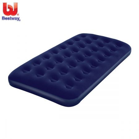 Free Shipping!Bestway Twin Air Mattress & Pump