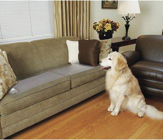 20*48inch Automatic Indoor Pet Training Mat / Scat Mat