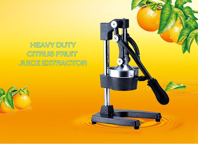 Manual Press Fruit Juice Extractor Crazy Sales